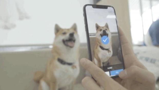알리페이는 지난달 비문 인식 기술을 활용해반려동물을 위한 '펫보험 서비스'를 출시했다. 사진=바이두