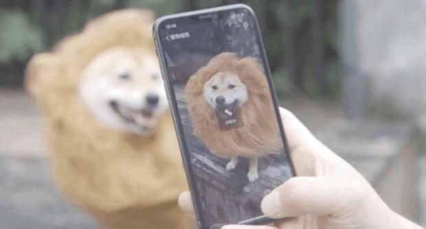 중국 인공지능(AI) 얼굴인식 기업 메그비(Megvii)는 강아지 코주름 특징 검사 방법에 대한 특허를 출원했다. 사진=바이두 제공