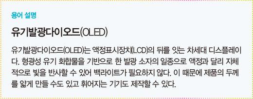 """""""LCD 안 만든다""""…본격 OLED 시대 여는 한국 디스플레이 '투 톱'"""