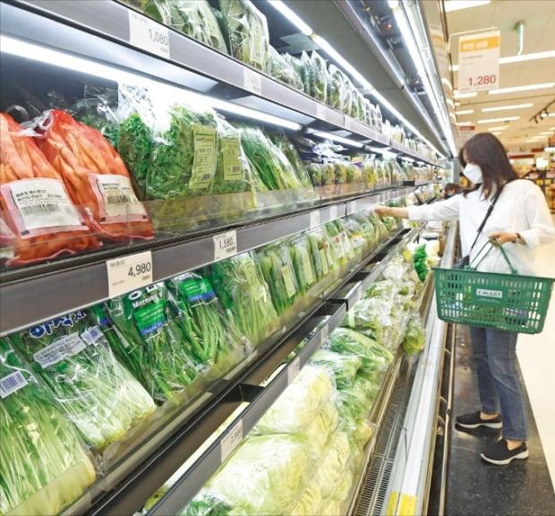 소비자물가 상승률이 지난달 0.01% 하락했다. 2일 서울 용산구의 한 대형마트에서 소비자가 과일과 채소를 고르고 있다. /김범준 기자 bjk07@hankyung.com