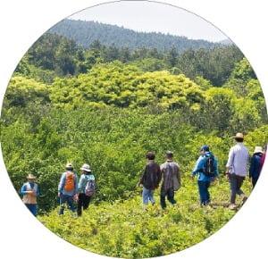 제주 본래의 자연을 느낄 수 있는 머체왓숲길. 제주관광공사 제공