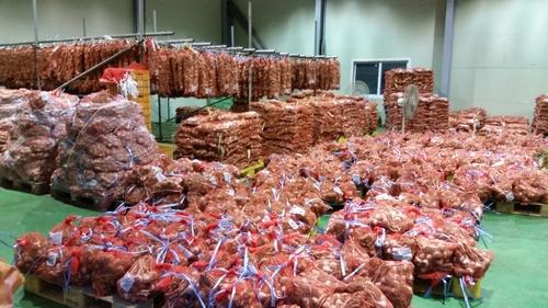 생산 늘고 소비 둔화…단양마늘 가격 7천∼1만원↓