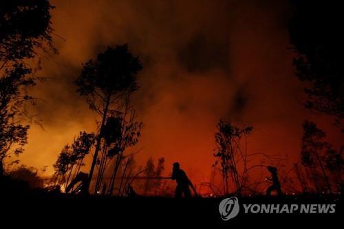 인도네시아 산불 또 시작…보르네오섬 중부 비상사태 선포
