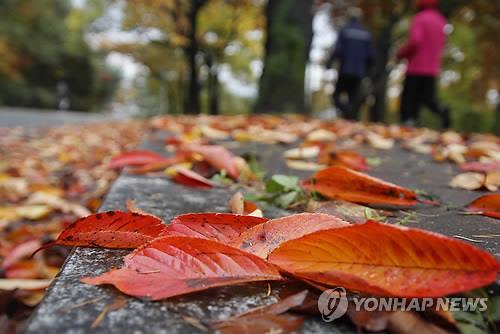 청주 우암산 '명품 둘레길' 생긴다…2023년 완공