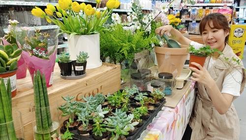 코로나19에 '반려식물' 뜬다…관엽식물·원예용품 매출 증가