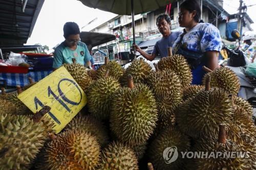 코로나 무색한 중국 내 태국산 두리안 인기…수출 78% 증가