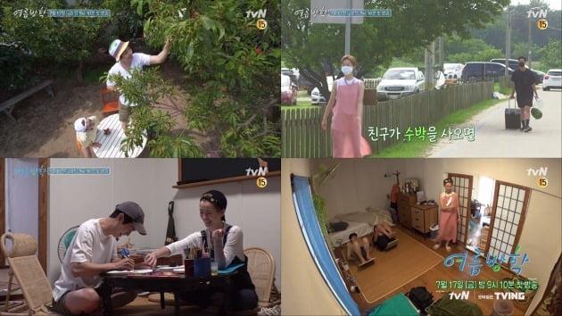 '여름방학' 예고./사진제공=tvN