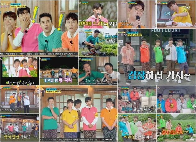 '뽕숭아학당' 11주 연속 시청률 1위…트롯맨 F4 장맛비 투혼