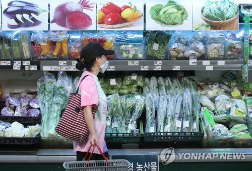 6월 소비자물가 상승률 0.0%…돼지 16.4%↑ 한우 10.5%↑(종합2보)