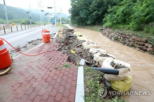 """해마다 물난리…영덕 강구면 주민 """"동해선 철길 탓"""""""