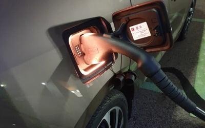 """""""전기차 팔고 가솔린차로 갈아타자""""…'빨간 불'"""