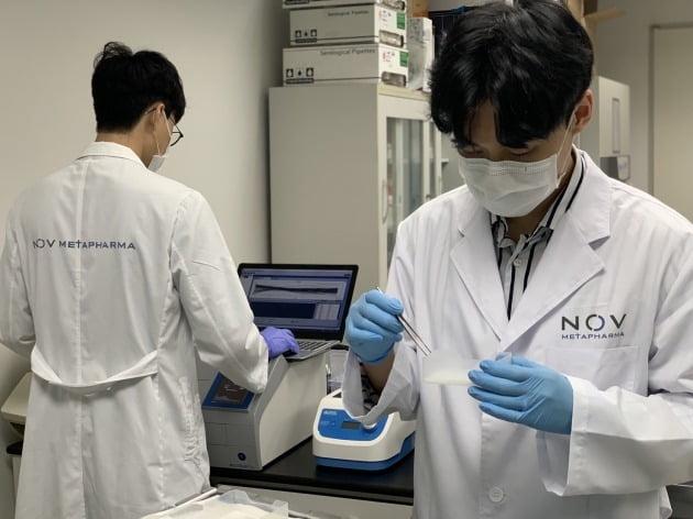 대사질환 신약개발 기업 노브메타파마의 자회사 노브메타헬스가 '사이토카인 폭풍'(cytokine storm)의 치료제 후보물질에 대한 특허를 지난 4일 미국에 출원했다고 6일 밝혔다. [사진=노브메타파마 제공]