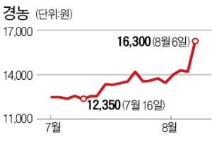 역대급 장마에 비료·농약주 '햇살'
