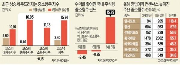 '가파른 상승' 중소형주…옥석가리기 시작?