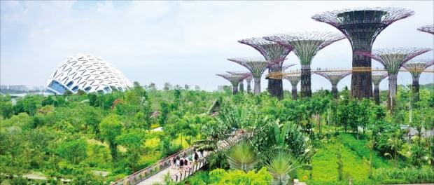 싱가포르 마리나베이에 있는 초대형 식물원 가든바이더베이. 싱가포르관광청 제공