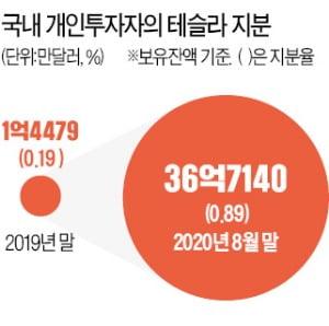 '한국 개미'공격 ... 테슬라 10 대 주주