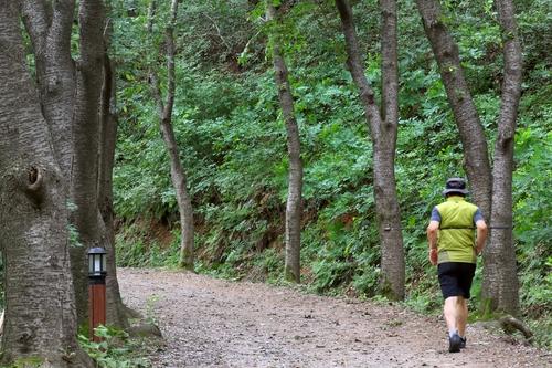 [걷고 싶은 길] 칠갑산 정상에 오르는 편안한 산장로