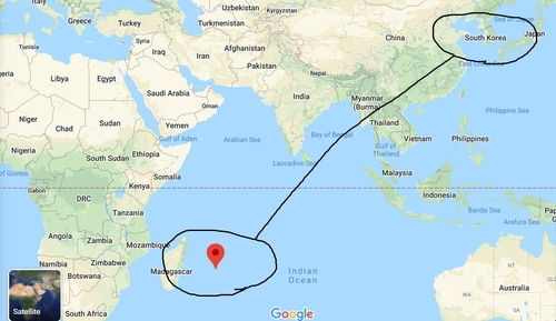 '한국처럼 방역' 모리셔스 아프리카 첫 코로나19 통제 성공