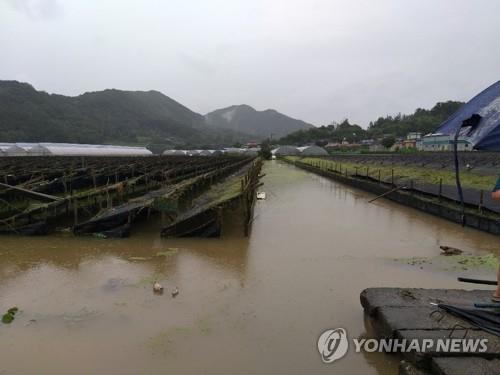 용담댐 방류 피해 4개 군, 민·관 '투 트랙' 대응
