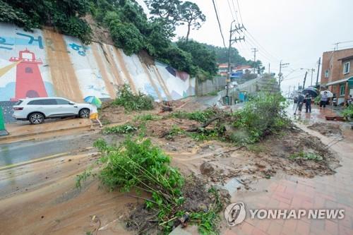 강원 닷새간 700㎜ 물폭탄에 철원 한탄천 범람…민통선마을 삼켜