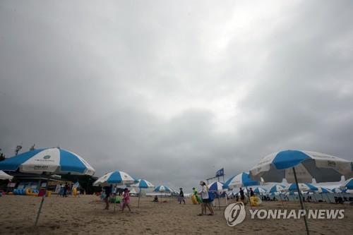 동해안 해수욕장 피서객 '반의반 토막'…1천434만명 급감