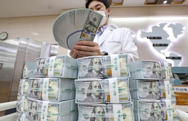 서울 중구 하나은행 본점에서 직원이 달러를 정리하고 있다. 사진=연합뉴스