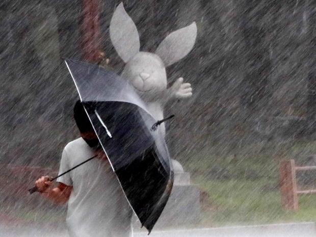 태풍 장미가 상륙한 지난 10일 오후 부산 해운대 해수욕장 부근에서 시민들이 비바람을 피해 우산을 쓰고 걸어가고 있다. /사진=연합뉴스