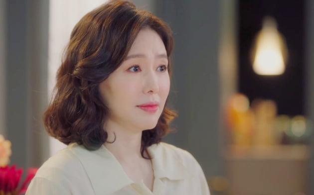 '청춘시대' 하희라/사진=팬엔터테인먼트