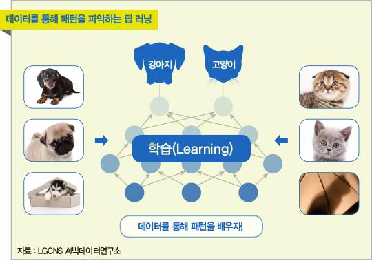 [AI 이야기] 어린이도 잘 아는 '강아지'와 '고양이'…AI는 왜 구별하지 못할까