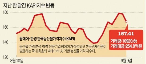 수확기 덮친 태풍…깻잎 71%, 마늘 59% 올라