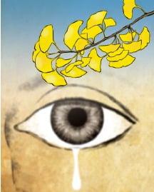 [이 아침의 시] 은행나무 - 안주철(1975~)