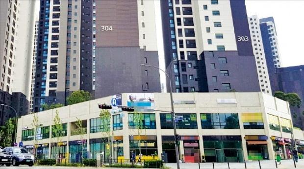 주택과 오피스텔에 대한 규제가 강화되면서 상가로 눈을 돌리는 투자자가 늘고 있다. 서울 강남구의 한 아파트 단지 내 상가.   /한경DB