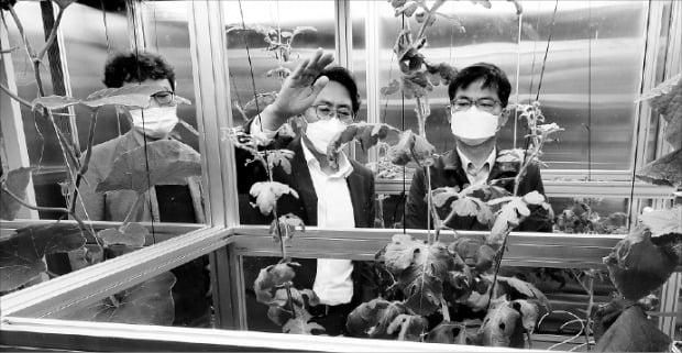 [포토] 스마트팜 기업 방문한 농진청장