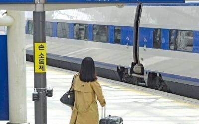 '고향 가면 불효자'라더니…제주여행 30만명
