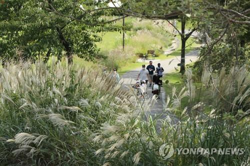 추석 앞둔 주말 공원·바다 북적…전통시장도 '활기'