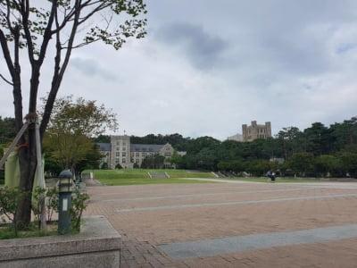 """""""조국 땐 촛불, 교수 비리엔 입닫는 고대생"""""""