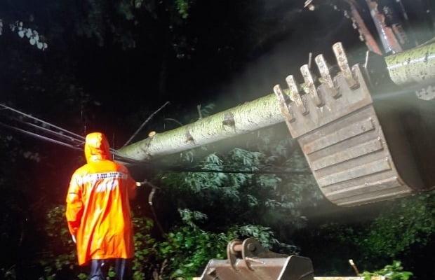 제9호 태풍 마이삭의 강풍에 쓰러진 나무를 소방대원이 제거하고 있다. 사진=연합뉴스