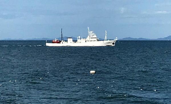 24일 오전 공무원 A씨(47)가 탑승한 어업지도선(무궁화10호, 499톤)이 소연평도 남방 5마일 해상에 떠 있다.  사진=뉴스1
