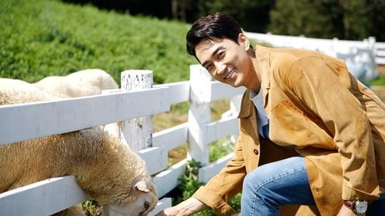 갬성캠핑 (사진=JTBC)