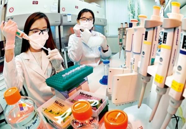 서울대 관악캠퍼스에 있는 국제백신연구소(IVI)에서 연구원들이 코로나19 백신 연구에 몰두하고 있다.  허문찬 기자 sweat@hankyung.com