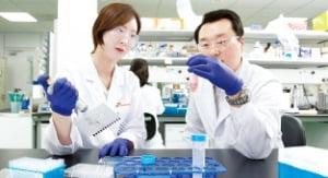 위기에 강했다…'혁신 DNA'로 다시 뛰는 기업들