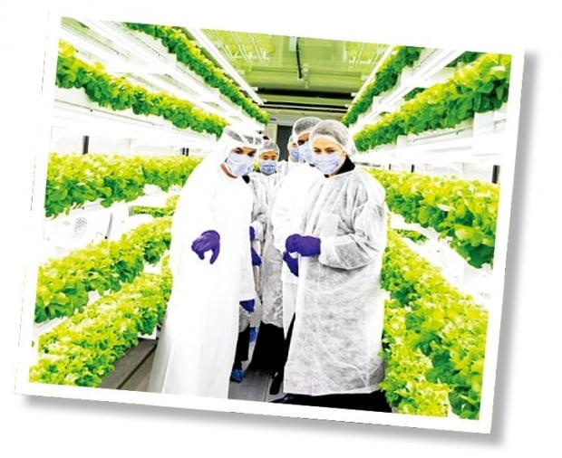아랍에미리트 정부 관계자들과 민간 투자자들이 국내 스타트업 엔씽이 수출한 모듈형 수직농장을 둘러보고 있다.  KOTRA 제공