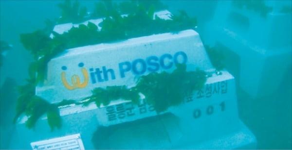 포스코의 트리톤은 훼손된 해양 생태계의 수산자원을 단기간에 회복하는 효과로 세계자연보전총회(WCC)와 세계지속가능발전협의회(WBCSD)에서 우수 사례로 소개됐다.  포스코 제공