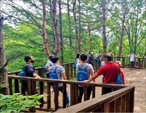 산림치유 프로그램
