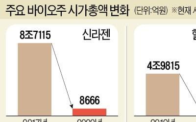 신라젠 이어 헬릭스미스도…바이오 스타 '비극'