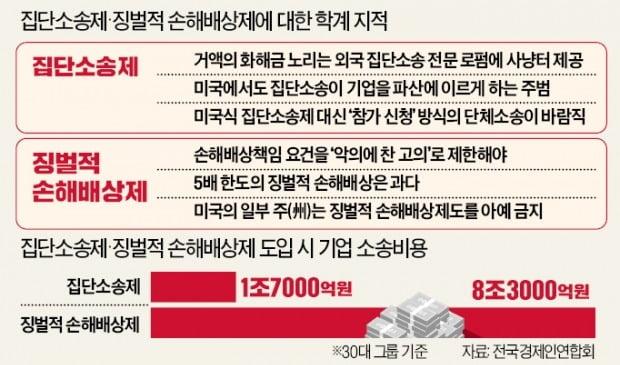 """""""집단소송제, 韓기업을 외국로펌 먹잇감 만들 것"""""""