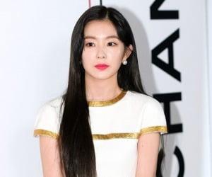 아이린, 갑질 논란 여파ing…'한국문화축제'·'더블패티' 직격탄