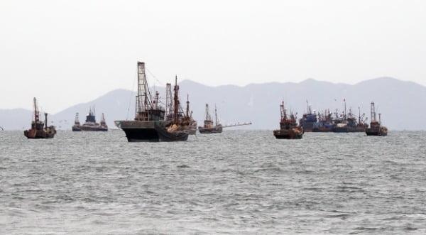 14일 인천 연평도 북측 서해 북방한계선(NLL) 해역에서 중국어선들이 불법조업을 벌이고 있다. /사진=뉴스1