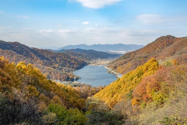 증평군 좌구산 분젓치 산새길 비대면 관광지 100선 선정