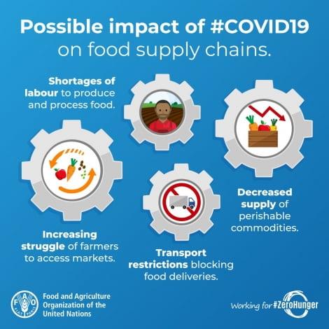 세계 곡물 공급망 깨져 가격 급등…글로벌 식량위기 '비상'